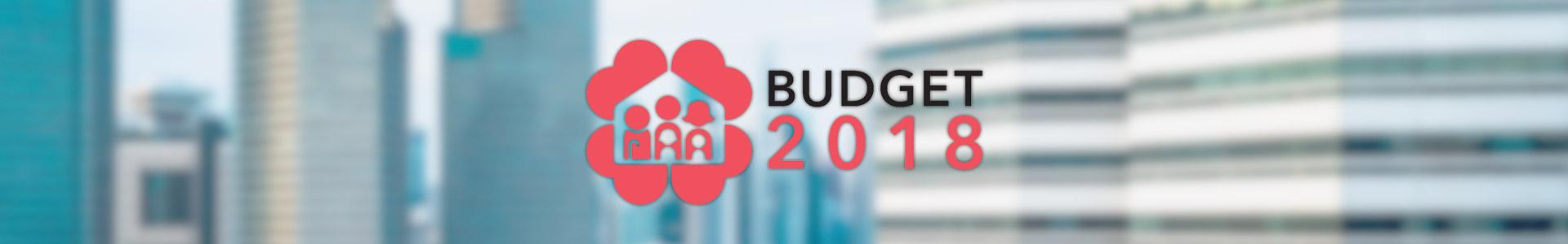 budget2015 header